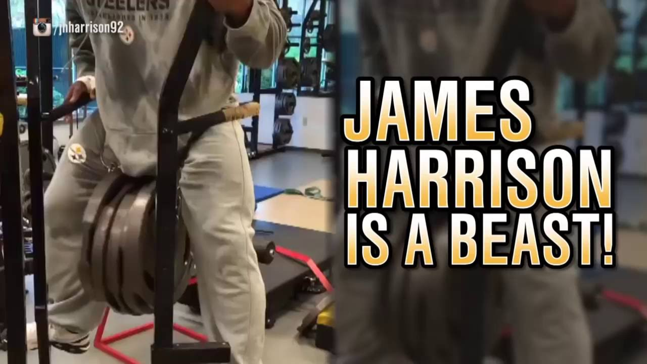 Watch James Harrison Do Tricep Dips With Almost 300 Pounds