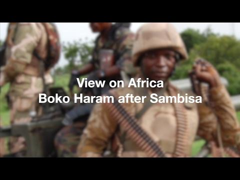 View on Africa: Boko Haram after Sambisa