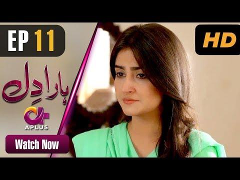 Haara Dil - Episode 11 | Aplus Dramas | Danish Taimoor, Hiba Bukhari | Pakistani Drama