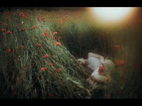 Клип элли на маковом поле - пей, моя девочка