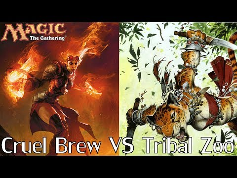 MtG Modern Gameplay - Tribal Zoo VS Cruel Brew