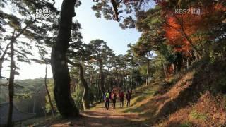 한국의 아름다운 가을 영상