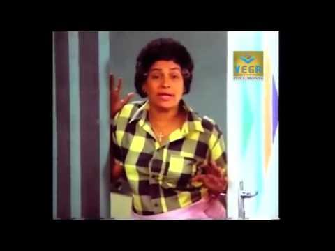 Mohanlal Comedy Scene    Boeing Boeing Malayalam Movie