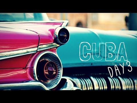 Cuba Travel Vlog - Day 3 // Kittens, CITY TOUR, and Salsa Festival!
