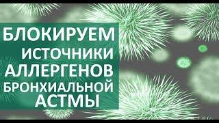 видео Пылевой бронхит: симптомы, причины и лечение