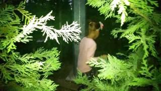 Elif ve Lera parkta saklambaç oynuyor… Eğlenceli çocuk videosu