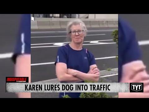 Karen Attempts MURDER Of Couple's Dog
