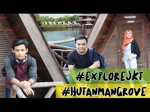 EXPLORE JAKARTA - KUY KE HUTAN MANGROVE PIK