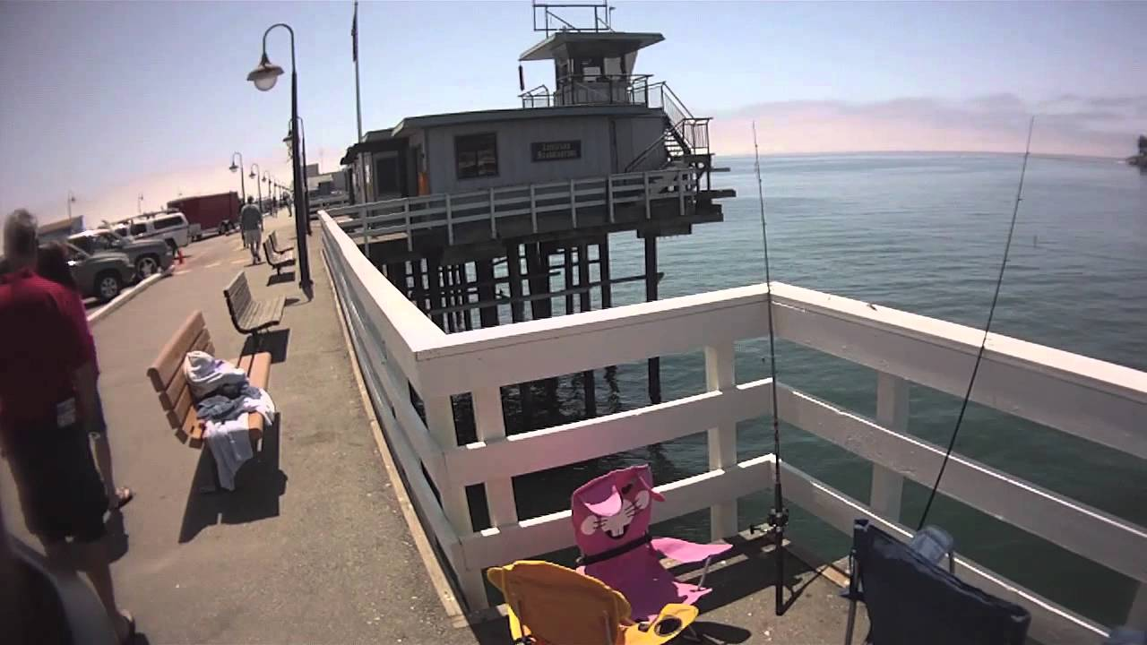 How to catch live squid on the santa cruz pier youtube for Fishing report santa cruz