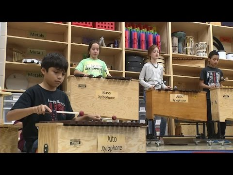 Elementary Musical Instrument Program