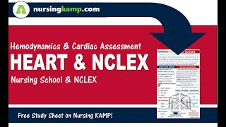 What is Cardiac Assessment NCLEX Review Heart Anatomy and Nursing KAMP 2019