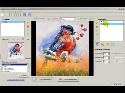 dp animation maker full version torrent download