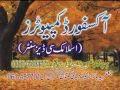 Zakir Hafiz Muhamad Ali  Shahadat Ali Akbar A S video