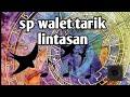 Suara Walet Tarik Lintasan  Mp3 - Mp4 Download