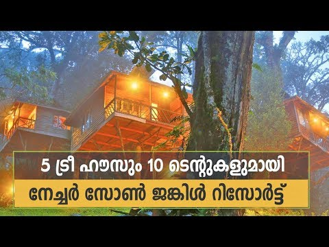 Nature Zone Jungle Resort Munnar - Excellent place for Honeymoon & Family Trips