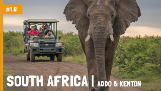 South Africa |  Addo Elephant Park & Kenton-on-Sea | Charlie's Travels