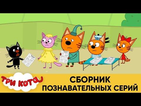 Три Кота | Сборник Познавательных Серий | Мультфильмы для детей 👽 ☄🚀