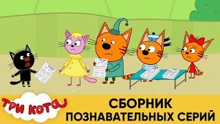 Три Кота   Сборник Познавательных Серий   Мультфильмы для детей 👽 ☄🚀