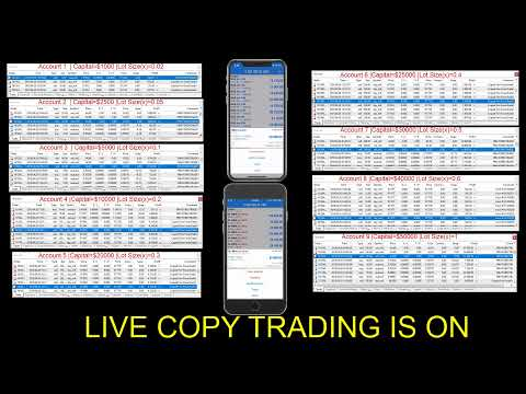 Forex currency trading live