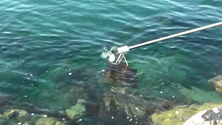 Electricity from the sea