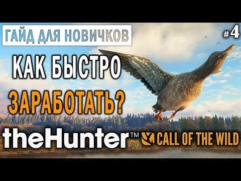 theHunter Call of the Wild #4 ???? - Как Быстро Заработать и Прокачаться? - ГАЙД