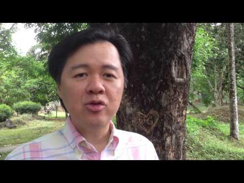 tungkol sa dengue Naaayon at kinakailangan ang masinop na pag-aaral tungkol sa alternatibong pananaliksik tungkol sa bisa ng tawa-tawa laban sa dengue at ang paggamit ng.
