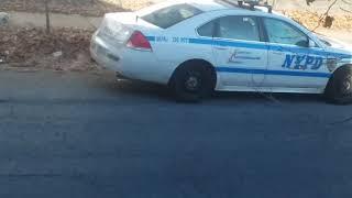 NYPD IDLING LAWS BROKEN