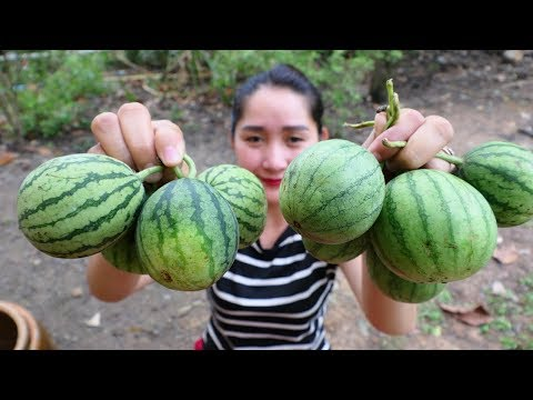 Yummy Young Water Melon Soup Cooking – Cooking Skill