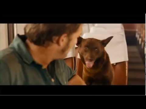 Red Dog Trailer