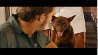RED DOG - Official Trailer