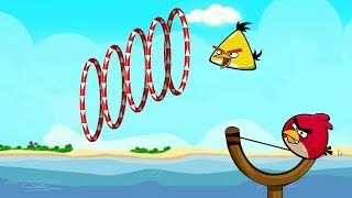 Angry Birds Slingshot Fun 2 - SHOOT THROUGH RINGS CHUCK AND RED WALKTHROUGH ALL LEVELS!