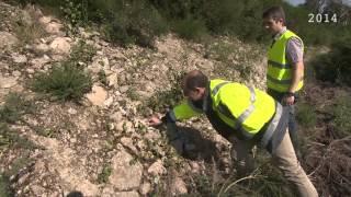 Protection de la biodiversité dans la carrière de Plumelin