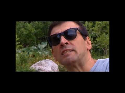 11 giugno 1974-2004. Murelli: così commemorammo Evola nel trentennale della sua morte