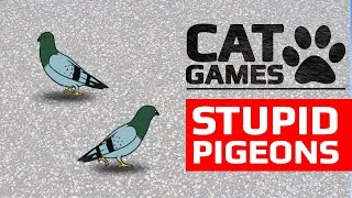 CAT GAMES - 🕊️ STUPID PIGEONS (ENTERTAINMENT VIDEOS FOR CATS TO WATCH)