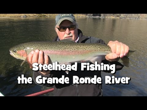 Steelhead Fishing The Grande Ronde River