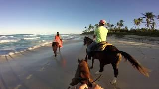 Punta Cana 2017 Hard Rock Resort