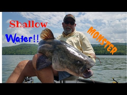 Catching Monster Catfish In SHALLOW Water!!!!