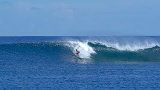 MY FIRST EPIC NOVELTY SCORE in THE MENTAWAIS! (& SPEAR FISHING!)