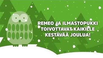 Remeo-pöllön ensimmäinen joulu