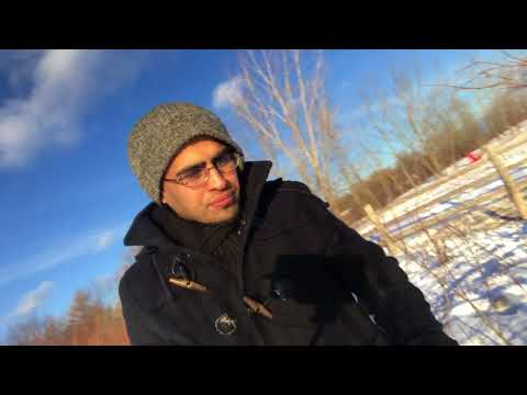 Canada Is The Coldest Country Ever | Toronto | Farsi speaking | Woodbine Beach 2017