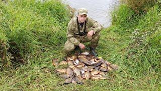 Рыбалка на сети хороший улов на сети Ловля карася