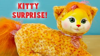 Kitty Surprise Autumn The Orange Spotted Cat- Did I Get More Than 3 Kittens?
