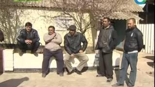 Современные цыгане мечтают о доме и постоянной работе