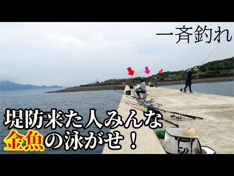 堤防みんなで金魚の泳がせ釣りをしてみたら一斉に食ってきた