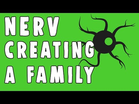 Nerv  | Creating a Family | One Year Anniversary