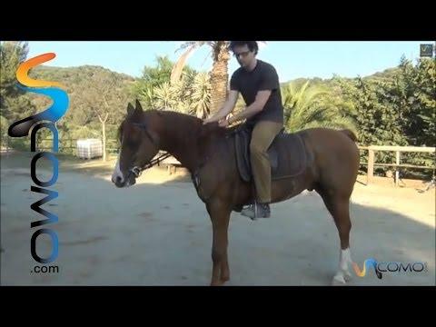 consejos-para-bajar-del-caballo