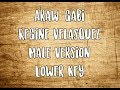 araw-gabi Regine Velasquez -Male  Version  (karaoke)