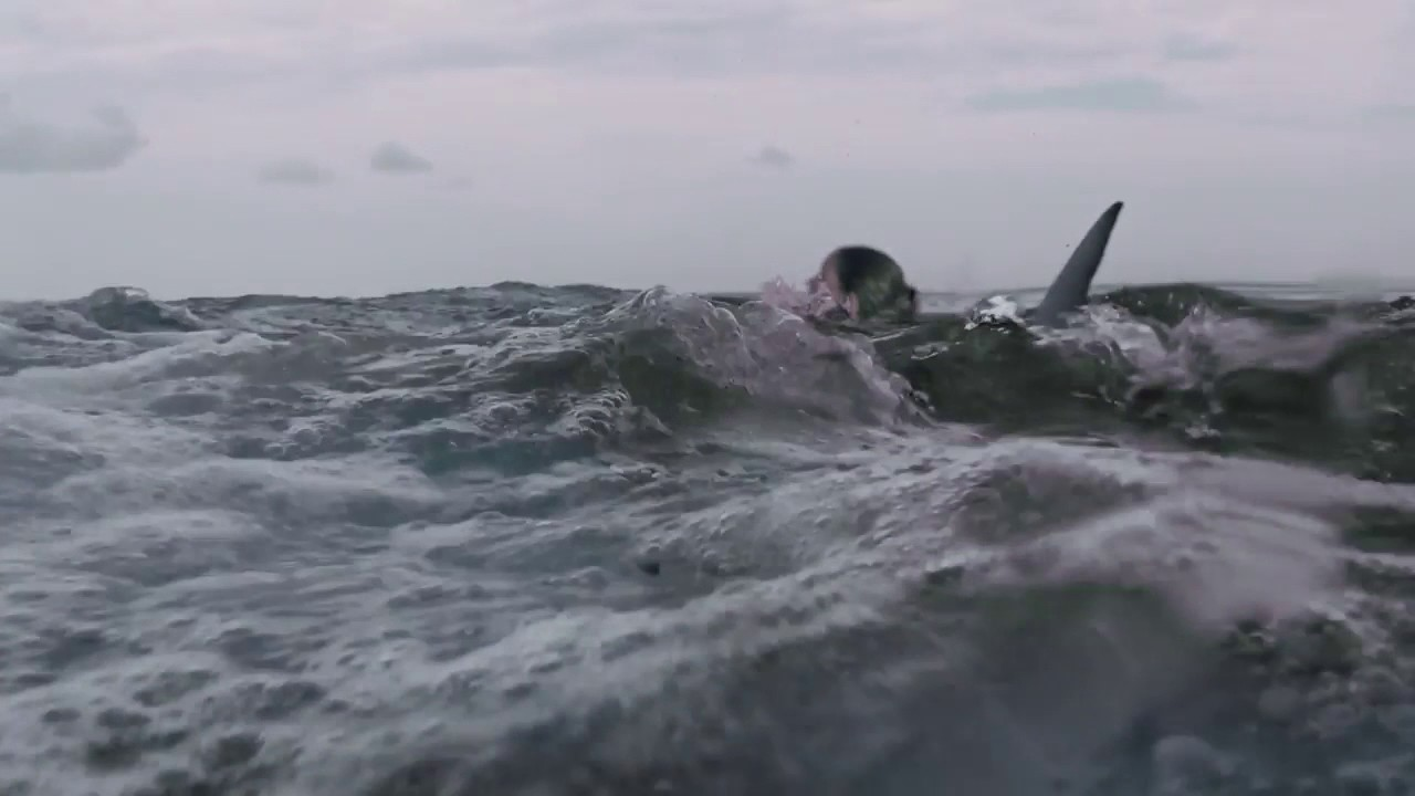 Open water 3 cage dive trailer ufficiale in lingua originale youtube - Open water 3 cage dive ...