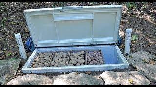 как сделать погребок из холодильника.Закладка. Овощи после зимы