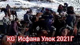 Исфана Улок KG 02 01 2021г